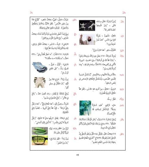 Arabic Between Your Hands: Dictionary (Arabic-Arabic